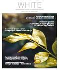 white 42